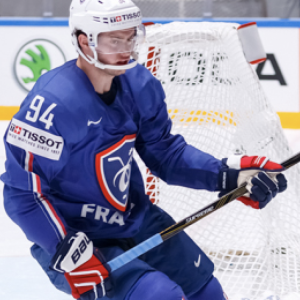 Lot 35 - Team Bozon, hockey sur glace